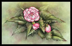 Angel Wing Begonia Watercolor E-Tutorial